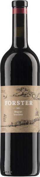 Forster Regent trocken 2017
